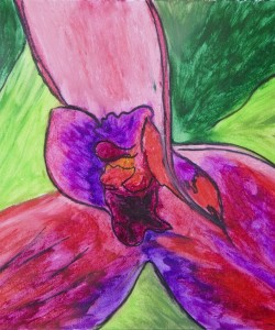 Orchid Through The Heart Oil Pastel by Sonia Rumzi